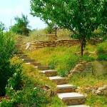 По этим дорожкам можно подняться на гору, откуда открывается чудесный вид на окрестности. Территория горы - наша.